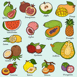 Color set with tropical fruits, vector cartoon stickers Stock Photo
