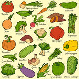 Color set with vegetables, vector cartoon stickers Stock Photos