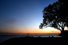 Color and Silhouette 2. Silhouette of a tree set against a colorful sky during the golden hour of sunset at East Coast Park, Singapore Royalty Free Stock Images