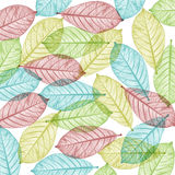 Color Skeleton leaves for background and text Royalty Free Stock Images