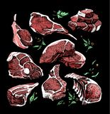 Color sketch of different pieces of meat. set. Meat products, steak, ribs on the dark background stock illustration
