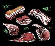 Color sketch of different pieces of meat. set. Color sketch of different pieces of smoked meat, corned beef royalty free illustration