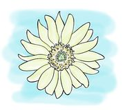 Color sketch of yellow sunflower flower on blue background, outline hand painted drawing. Digital illustration, color sketch of yellow sunflower flower on blue vector illustration