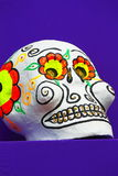 Color skull I Royalty Free Stock Image