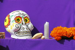 Color skull IV Royalty Free Stock Photography