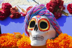Color skull XIV Royalty Free Stock Image