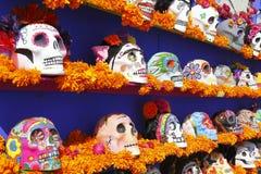 Color skull XIX Royalty Free Stock Photos