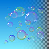 Color Soap bubbles Stock Photo