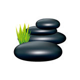 Color spa volcanic rocks with grass icon Royalty Free Stock Photos