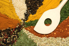 Color of spices Royalty Free Stock Images