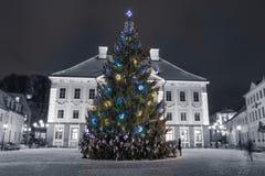 Color splash Christmas tree. Christmas tree at town hall square e in Tartu,Estonia stock image