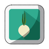 Color square with middle shadow sticker with onion vegetable Royalty Free Stock Images