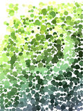 Color step of green and yellow bubble pattern Royalty Free Stock Image