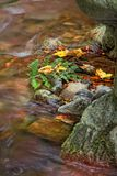 Color of stream in autumn stock photography