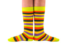 Color striped socks Stock Images