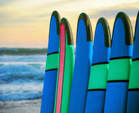 Color surf boards in a stack by ocean Royalty Free Stock Photography
