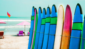 Color surf boards in a stack by ocean Stock Image