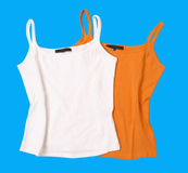 Color t-shirt blouse vest Royalty Free Stock Image