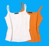 Color t-shirt blouse vest Royalty Free Stock Image