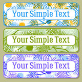 Color Tags with Pine Branch, Set Stock Photo