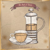 Color tea press and cup sketch placed on vintage background. Royalty Free Stock Photo
