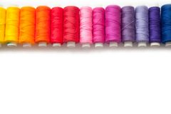 Color thread for sewing. White background. Rainbow royalty free stock photography