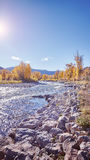 Color toned autumn landscape against the sun. Royalty Free Stock Photo