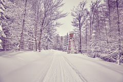 Color toned hunting pulpit in winter forest. Royalty Free Stock Images