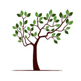 Color Tree with Leafs. stock illustration