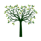 Color Tree with Leaves. Vector Illustration and graphic elements. Stock Image