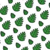 Color tropical leaf botany nature background. Vector illustration royalty free illustration