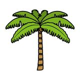 Color tropical palm nature tree style. Vector illustration royalty free illustration