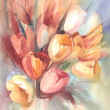 Color tulips bouquet watercolor. Red, yellow and white tulips bouquet on color background hand made watercolor stock illustration