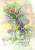Color tulips in vase watercolor Stock Images