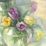 Color tulips in vase watercolor. Color tulips bouquet on green yellow background hand made watercolor. Still-life with vases Royalty Free Stock Image