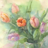 Color tulips in vase watercolor. Color tulips bouquet on green yellow background hand made watercolor. Still-life with vases Stock Photos