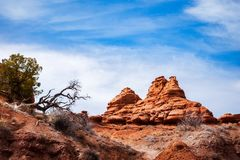 Rock formations at Kodachrome Basin State Park, USA. Royalty Free Stock Image