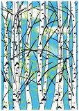 Color vector illustration of birch trees and blue sky with white clouds. Royalty Free Stock Photo
