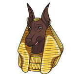 Color vector image Anubis. Royalty Free Stock Images