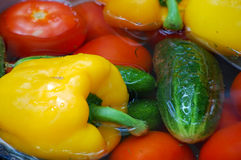 Color vegetables. Vegetables, cucumber and bell pepper in water Royalty Free Stock Image