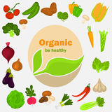 Color vegetables icons set. Organic food logo in the middle for web and mobile design Stock Photo