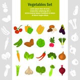 Color vegetables icons set for web and mobile design Stock Photography