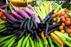 Color vegetal Imagen de archivo libre de regalías