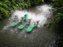 Color verde, aeradores superficiales de la rueda de paleta del agua imagenes de archivo