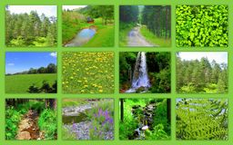 Color verde de las imágenes hermosas de la montaña Imagen de archivo