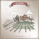 Color vineyard and cottage landscape vector sketch on grunge. Stock Images