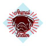 Color vintage animal shelter emblem Stock Images