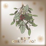 Color vintage Christmas card with mistletoe branch decorations. Royalty Free Stock Photos