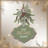 Color vintage Christmas template with mistletoe branch and frame. Stock Photo
