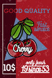 Color vintage fruit banner Stock Photos